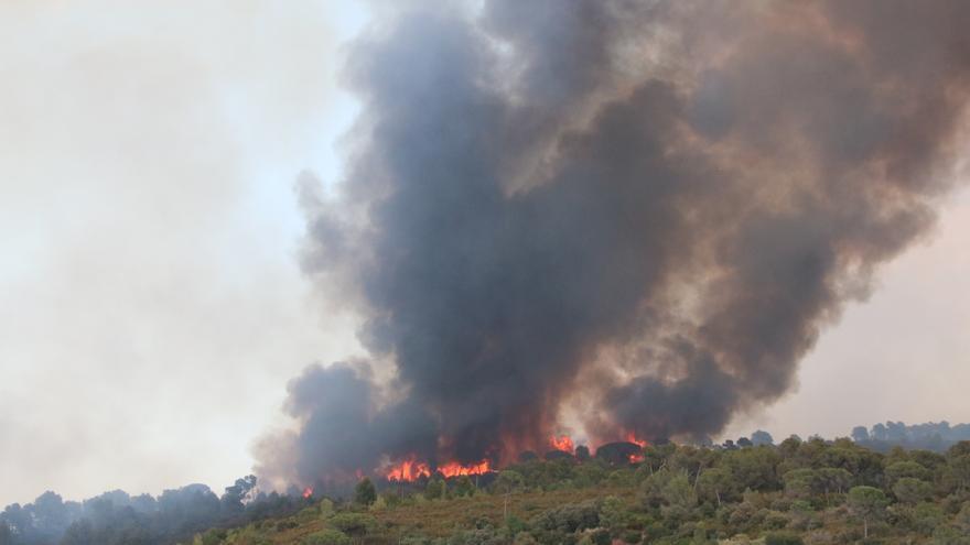 Extingit l'incendi de Castellví de Rosanes i Martorell