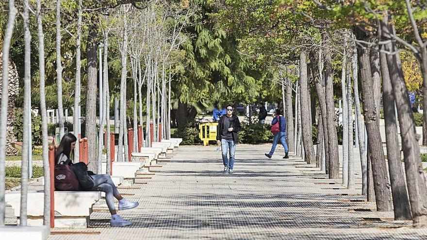 Alumnos de la UA piden que se repita un examen con 206 suspensos y 7 aprobados