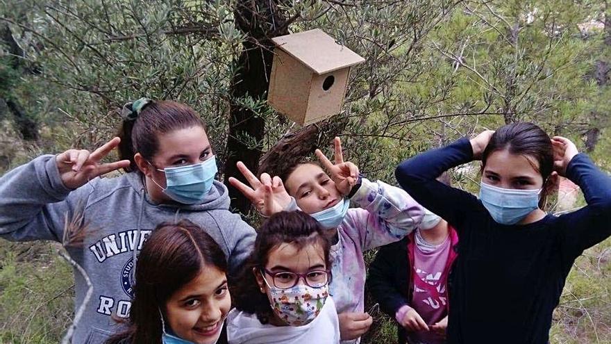 Ecologismo para los niños en Bolbaite