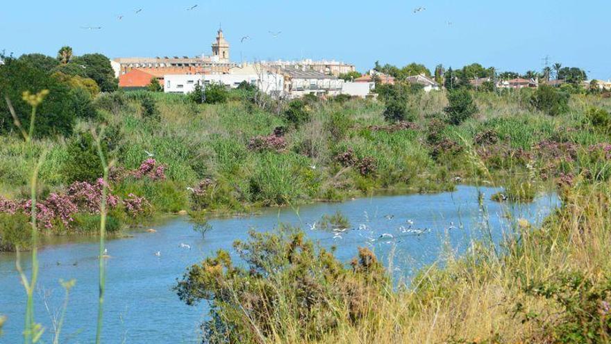 Cuando el río Mijares suena, agua lleva... ¡Y mucha!