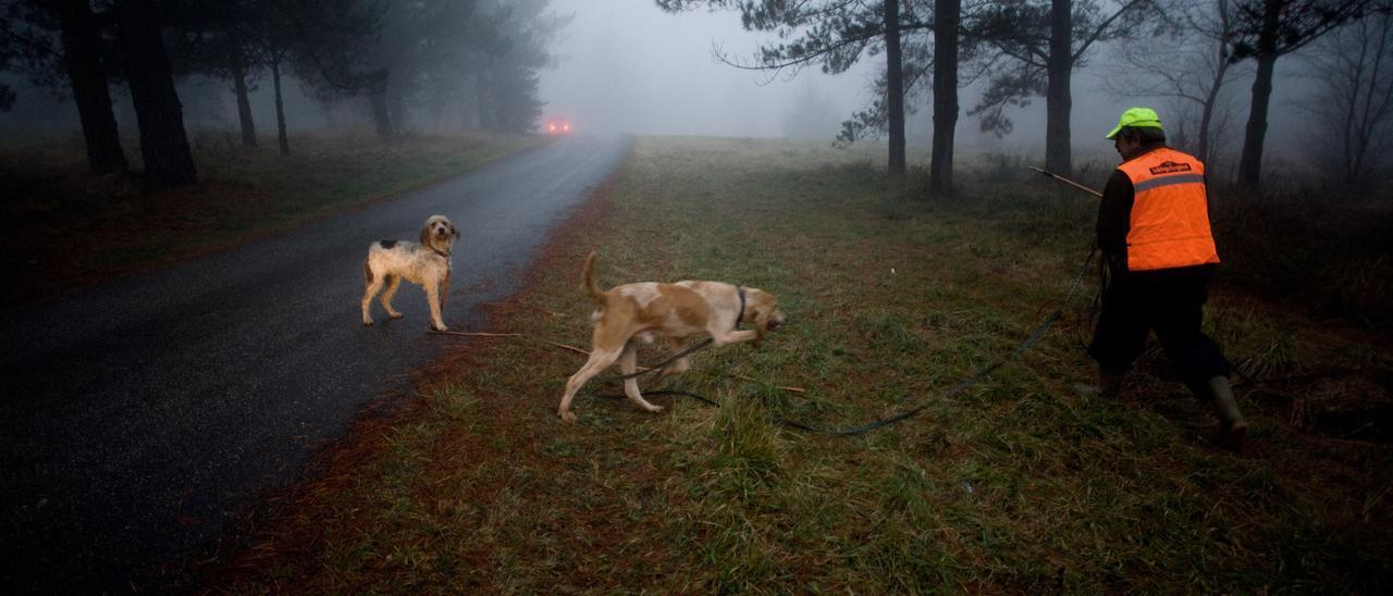 Un cazador con sus perros, en un imagen de archivo.