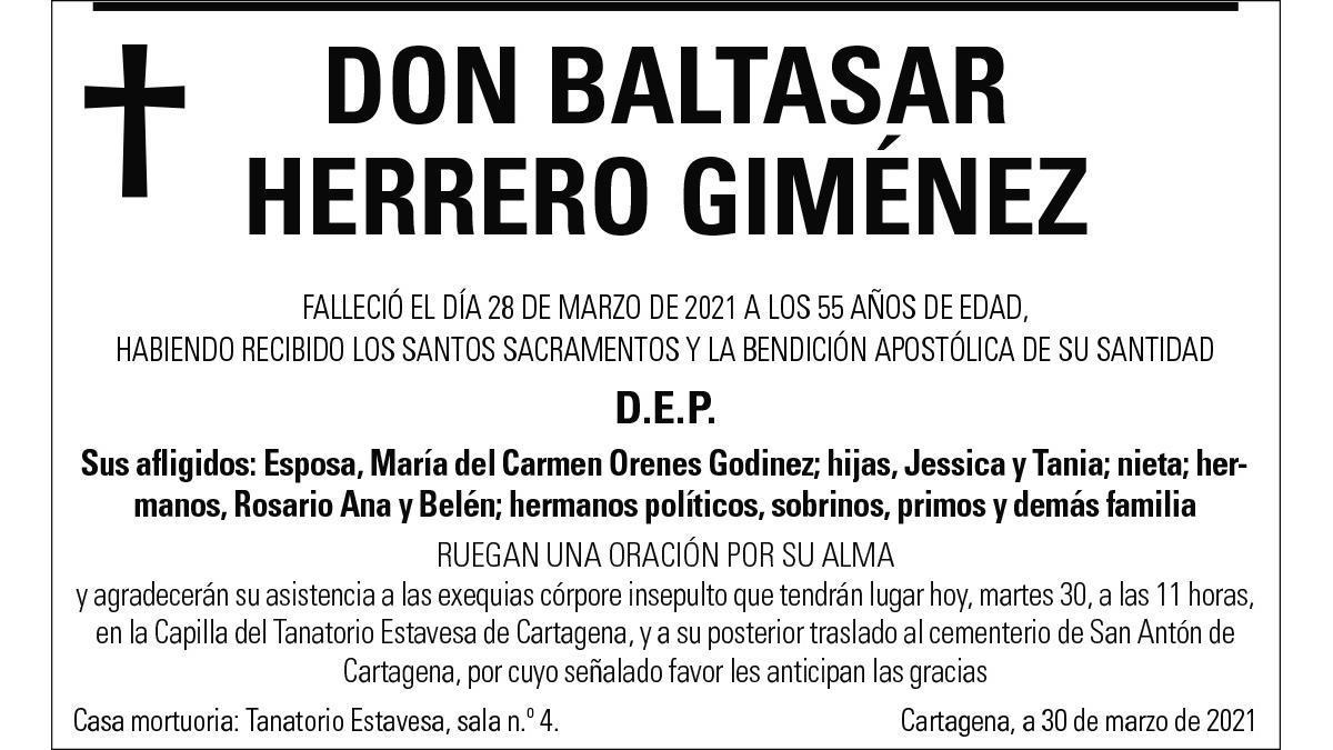 D. Baltasar Herrero Giménez