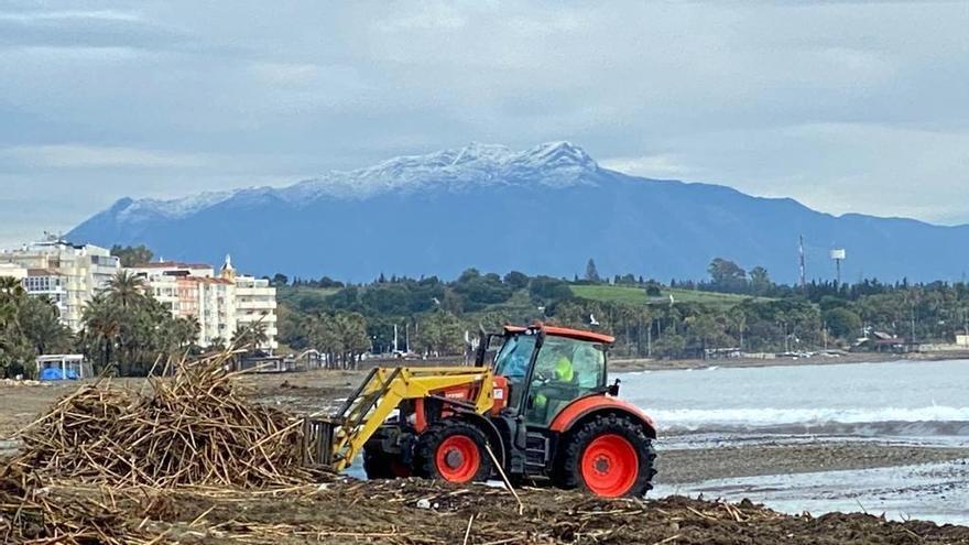 Estepona comienza la limpieza de las playas tras el paso de la borrasca Filomena