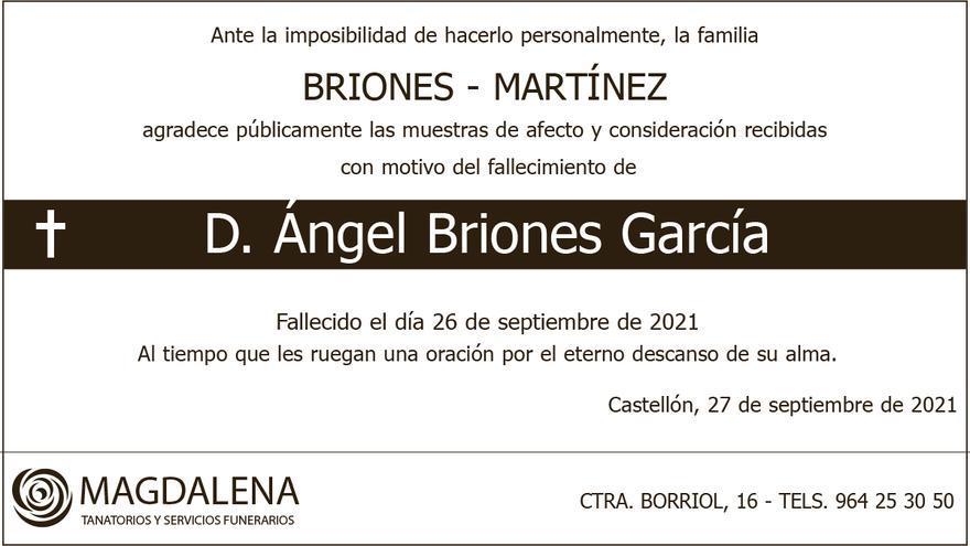 D. Ángel Briones García