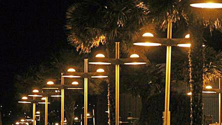 Las palmeras del Paseo Alcalde Blanco se reubicarán en varios puntos del municipio