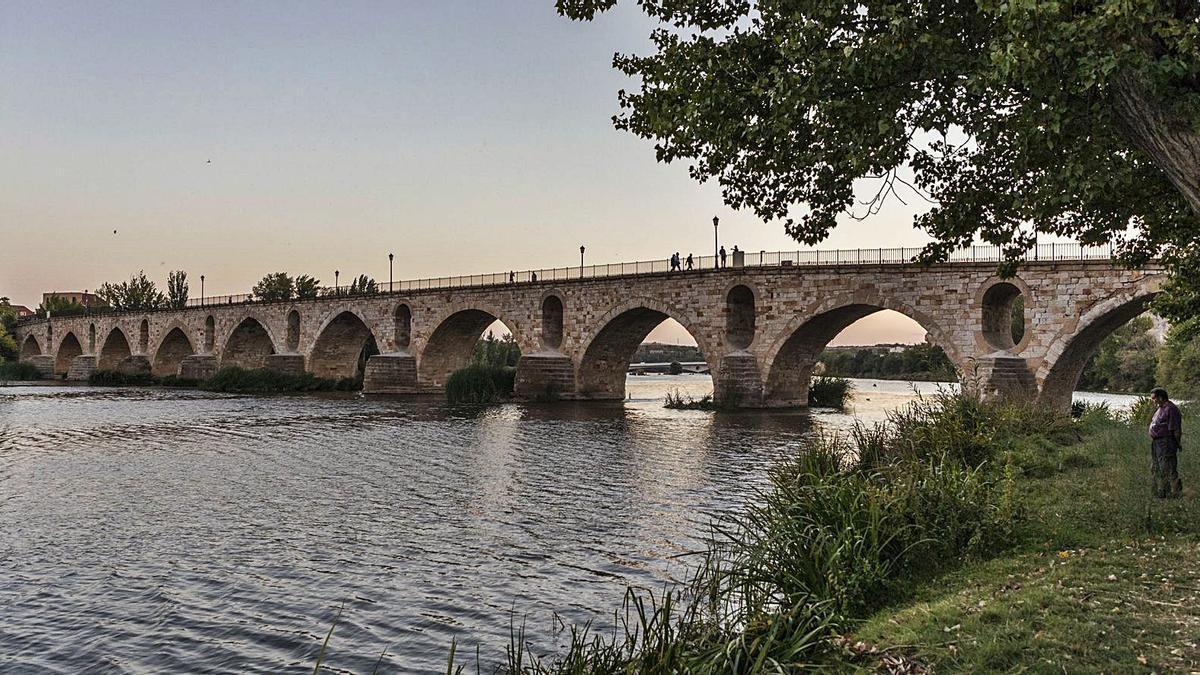 Los pilares del Puente de Piedra lucen libres de árboles y vegetales que cegaban los ojos del viaducto. | Nico Rodríguez