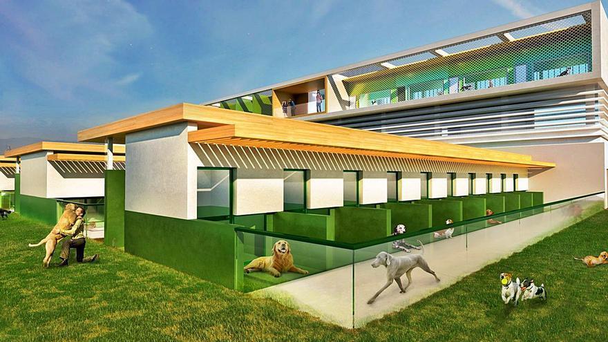 València se juntará con cuatro refugios de animales a medio plazo