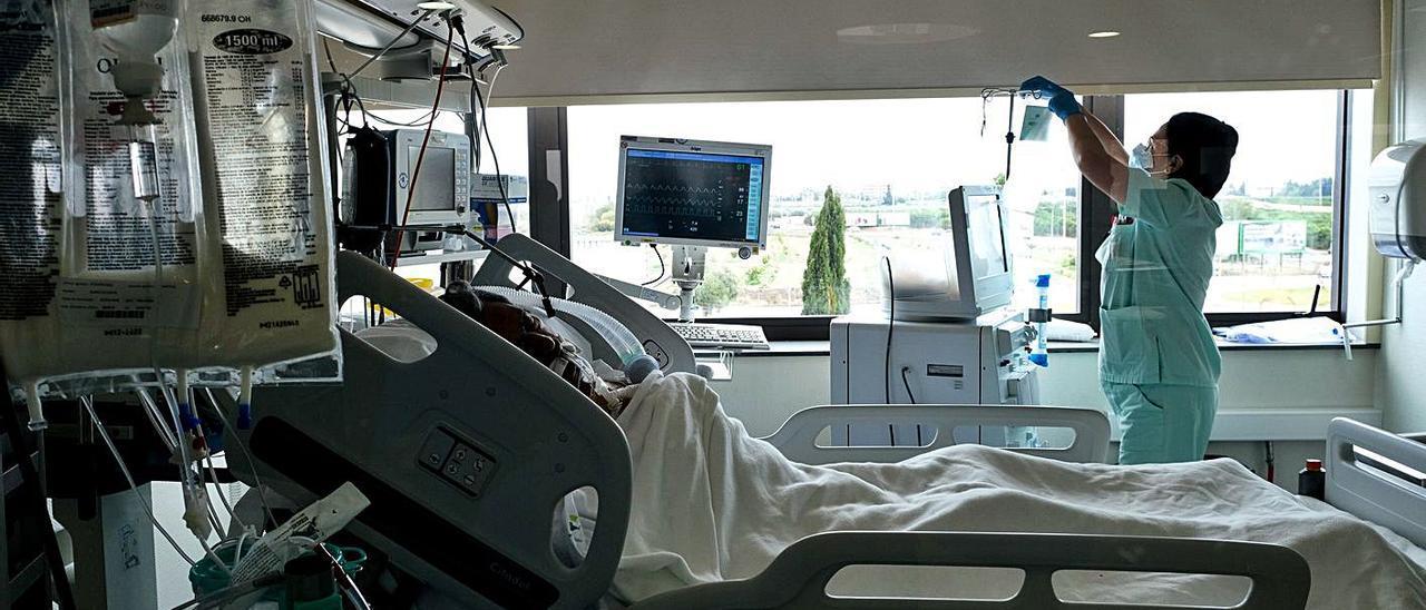 UCI del Hospital Universitario de Torrevieja. | ÁXEL ÁLVAREZ