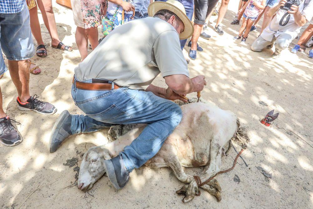 Dolores, capital de la ganadería