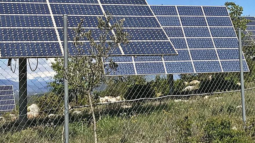 La demanda de subvenciones para fotovoltaicas se multiplica por diez