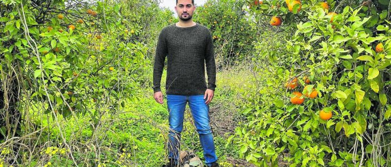 El olivense Sergio Morell, autor de la investigación, en un huerto abandonado de Oliva, el viernes pasado.   JOSEP CAMACHO