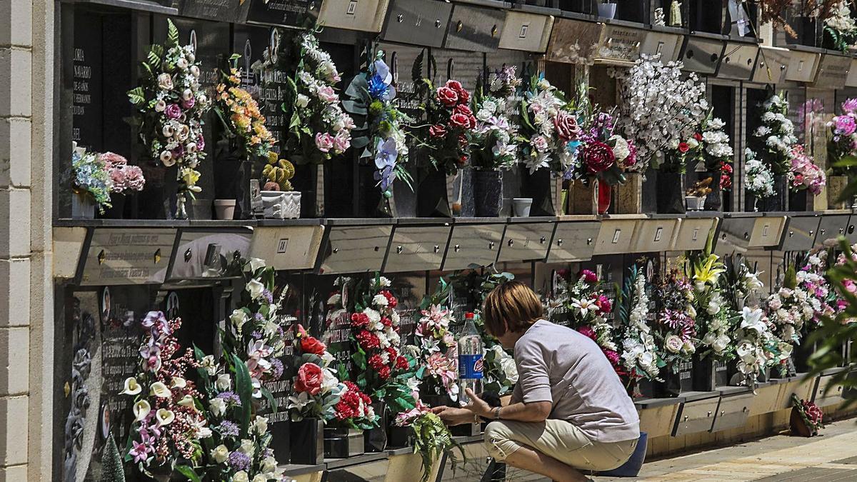 Flores para las personas que descansan en los nichos del cementerio de Elche, en imagen de archivo. | ANTONIO AMORÓS
