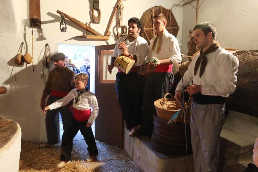 Fiesta de s''Oli en Forada