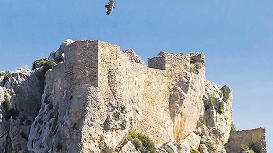 El Defensor del Pueblo insta al Govern a proteger la Serra Tramuntana