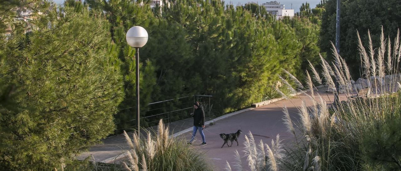 Zonas verdes de Alicante