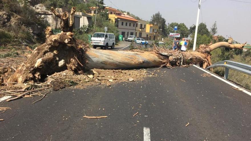 Finaliza la situación de alerta por viento en Canarias