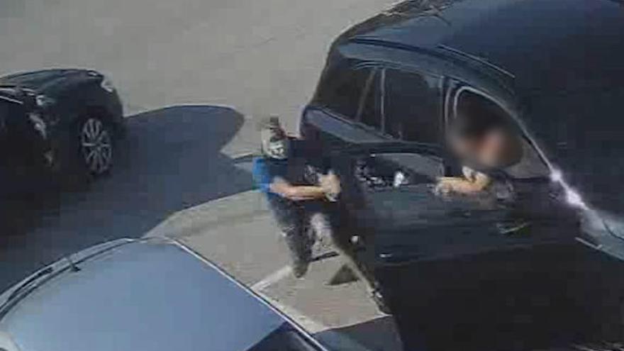 Cae una banda criminal dedicada a robar en áreas de descanso de la autovía A-7