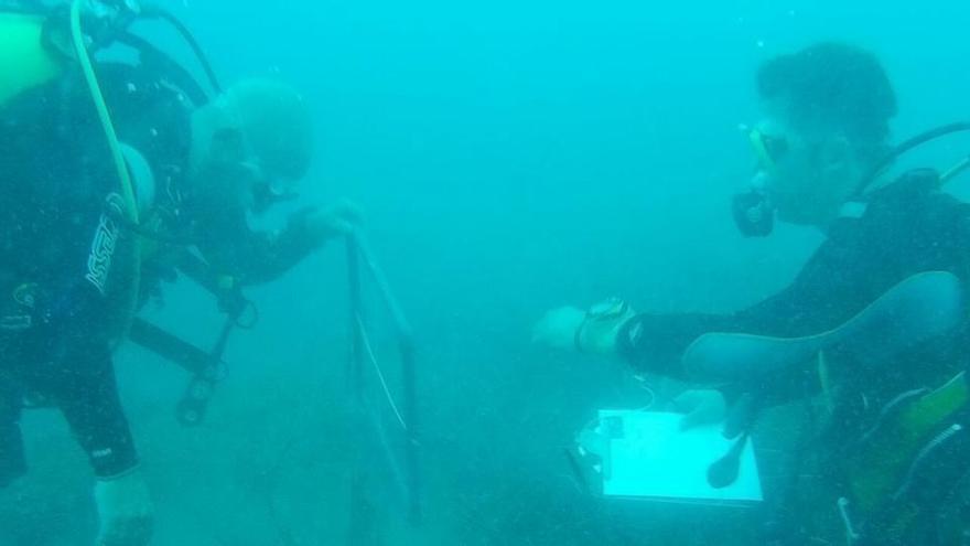 El estudio del fondo de los mares
