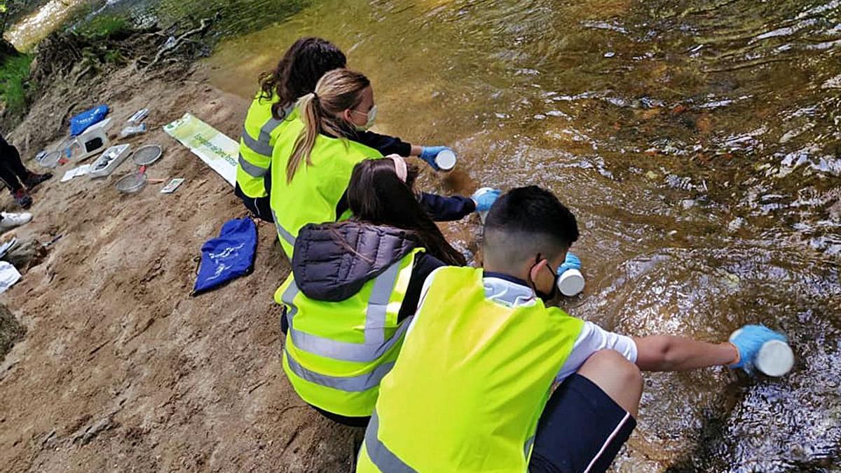 Algunos de los Ecovigilantes recogiendo muestras del Lonia.     // FDV