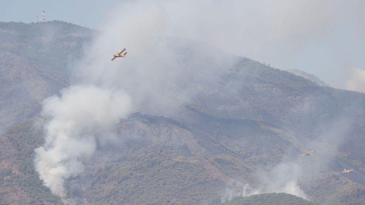 incendio-malaga8.jpg