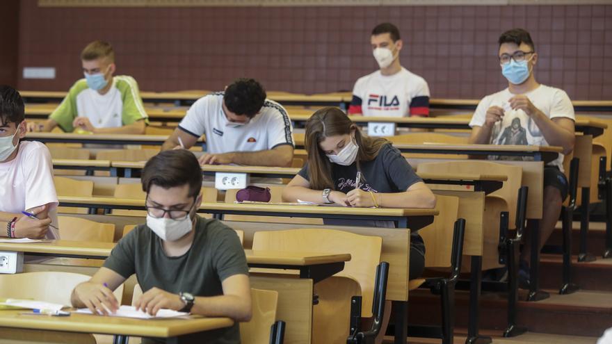 ¿Cuáles son las carreras con mayor o menor nota de corte en la Universidad Miguel Hernández de Elche?