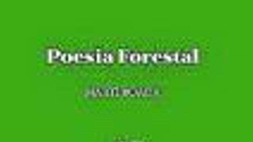 La poesia forestal de Martí Boada