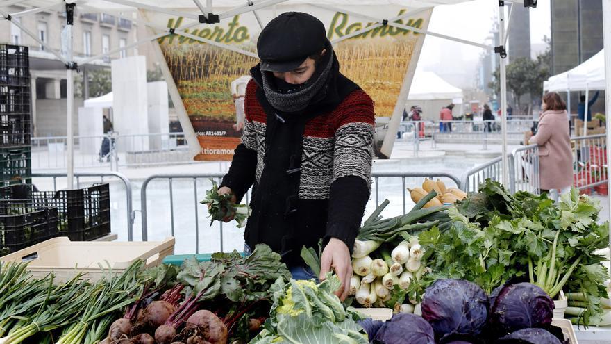 Intensa actividad gastronómica y agroalimentaria