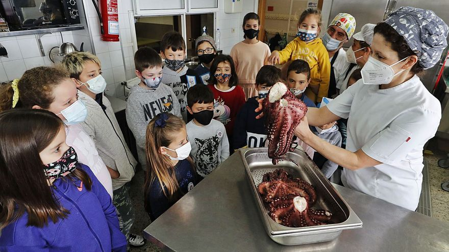 Pulpo 'á feira' en el menú escolar en Coruxo