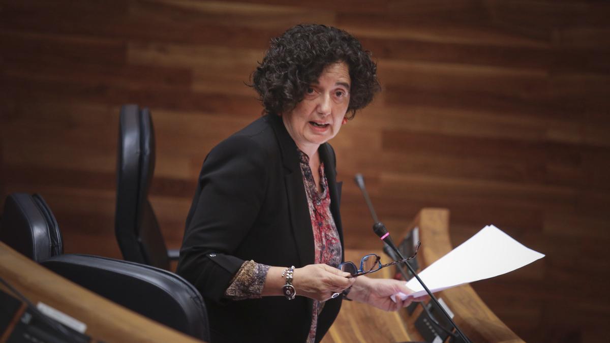 Berta Piñán, en un comparecencia en la Junta.