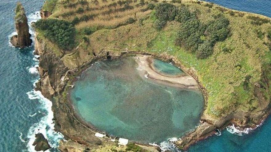 El CPI Mosteiro lidera un proyecto conjunto con Irlanda y las Azores sobre investigación botánica