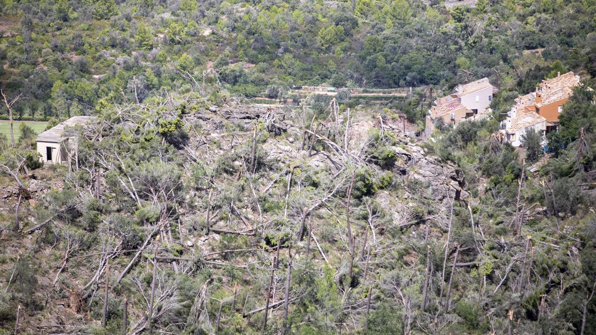El fenómeno causó importantes daños ecológicos en la Serra.