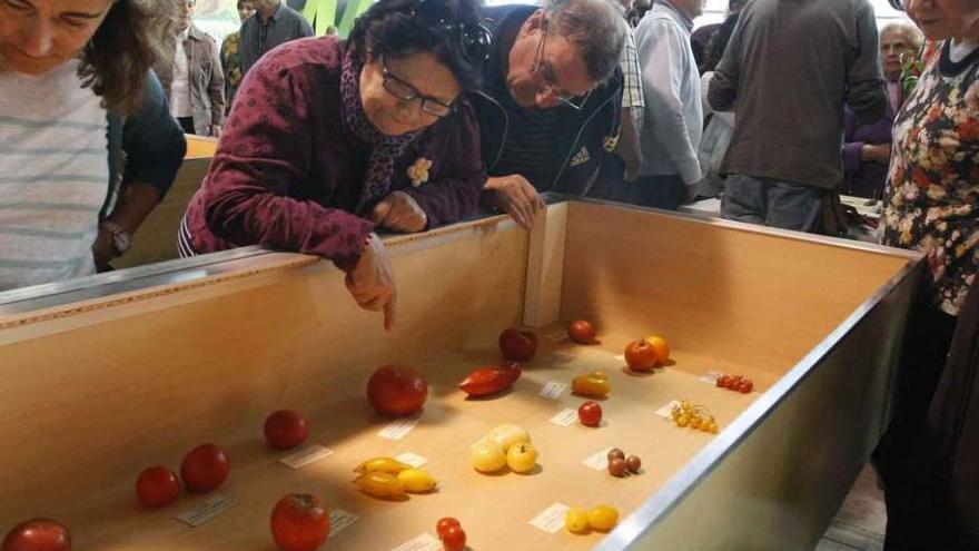 Público observa una de las exposiciones.