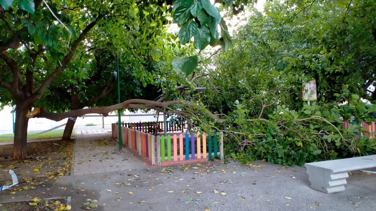 Árbol caído en el parque infantil de la plaza Jaca