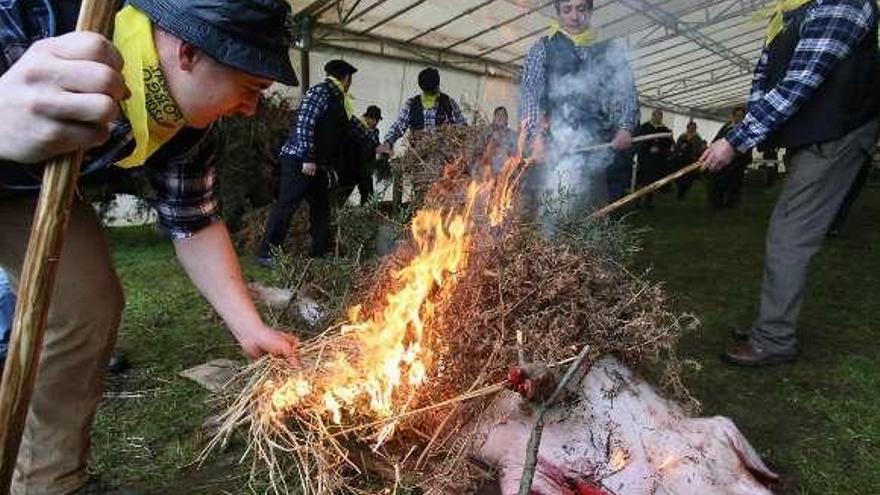 La matanza tradicional tendrá lugar el 2 de febrero en Botos