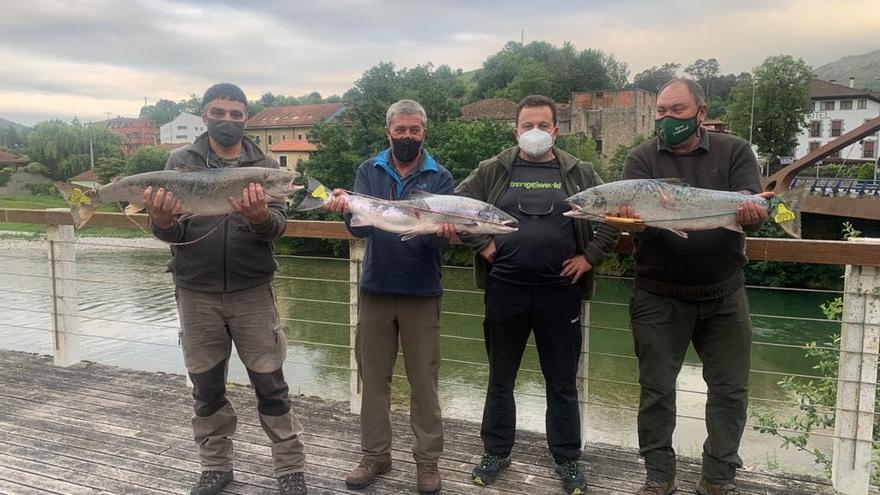 El álbum de la temporada del salmón en Asturias: cañas con éxito