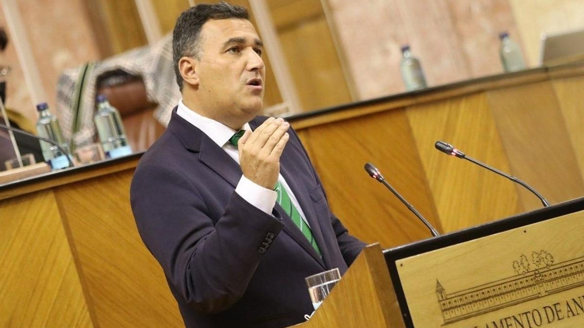 Carlos Hernández White, parlamentario andaluz de Cs por Málaga, en el Parlamento de Andalucía