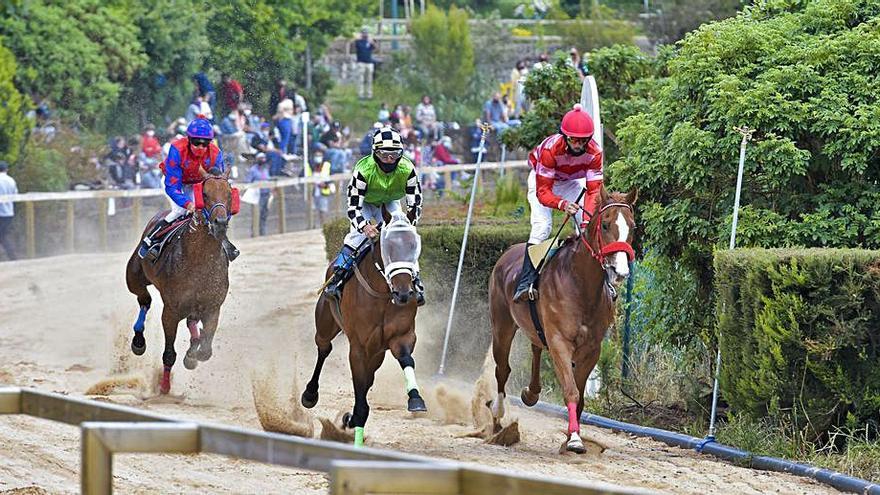 El hipódromo de La Laguna de Valleseco acoge la primera carrera con público desde el pasado año