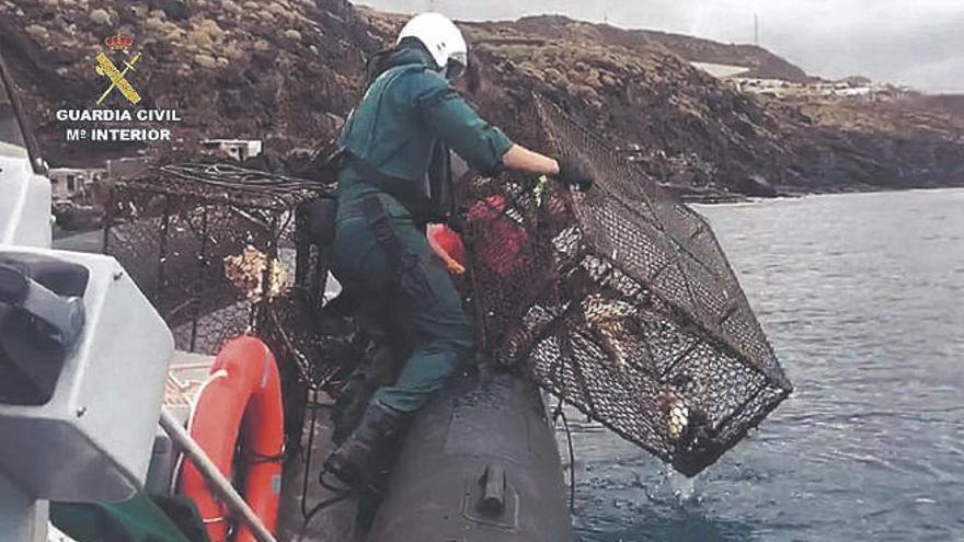 La Guardia Civil detecta desde junio veinte infracciones en materia de pesca en Tenerife