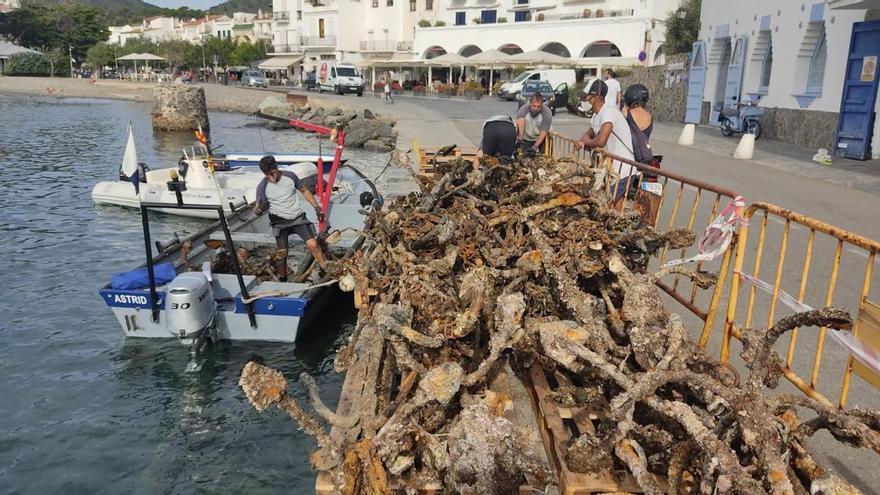 Cadaqués retira un gran nombre d'àncores i cadenes que malmetien el fons marí