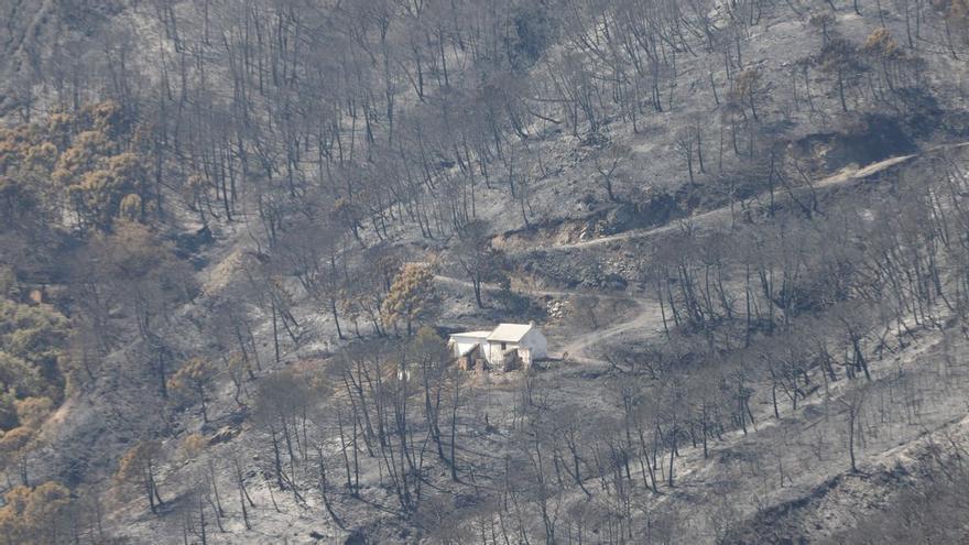 El devastador fuego de Sierra Bermeja, en Málaga, sigue sin control