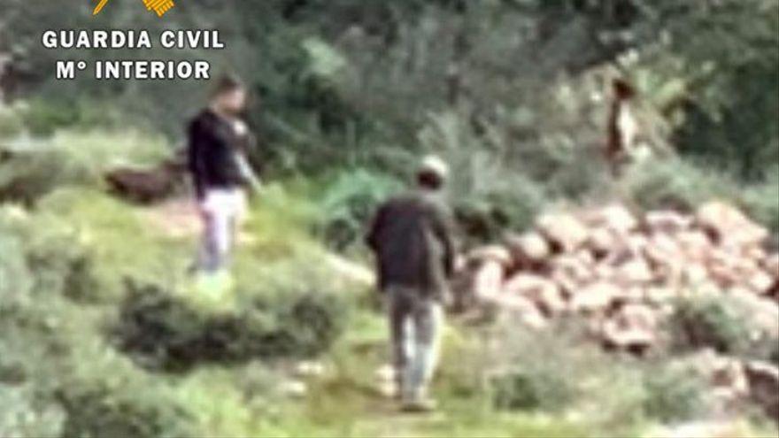"""Un padre y su hijo ahorcan a su perro en Málaga porque """"no servía para cazar"""""""