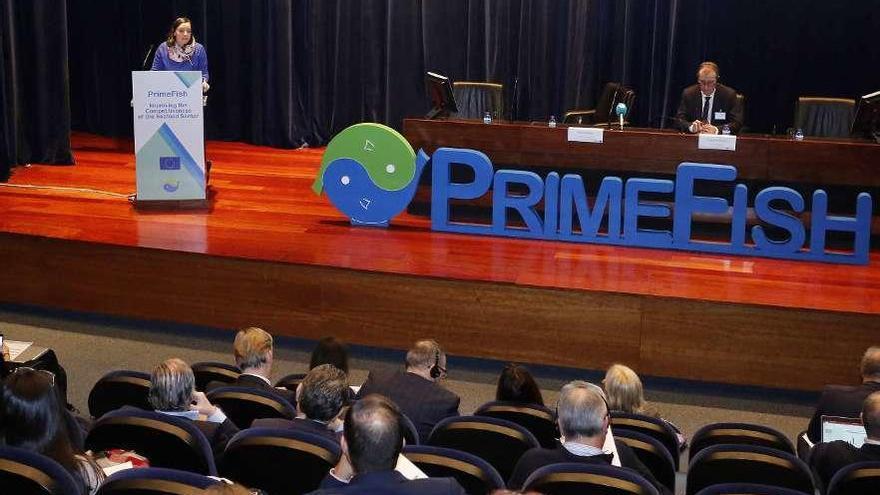 El 'Big Data' llama a la industria gallega