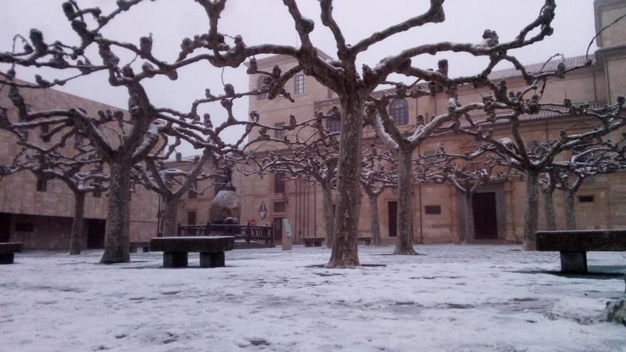 El tiempo en Zamora: la provincia, en aviso amarillo por niebla y frío