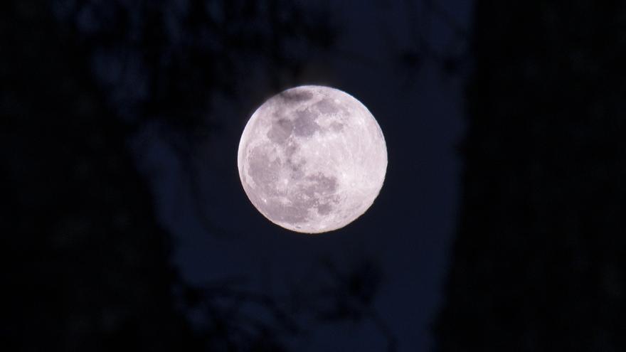 Superluna rosa de abril: ¿dónde y cuándo ver este fenómeno?