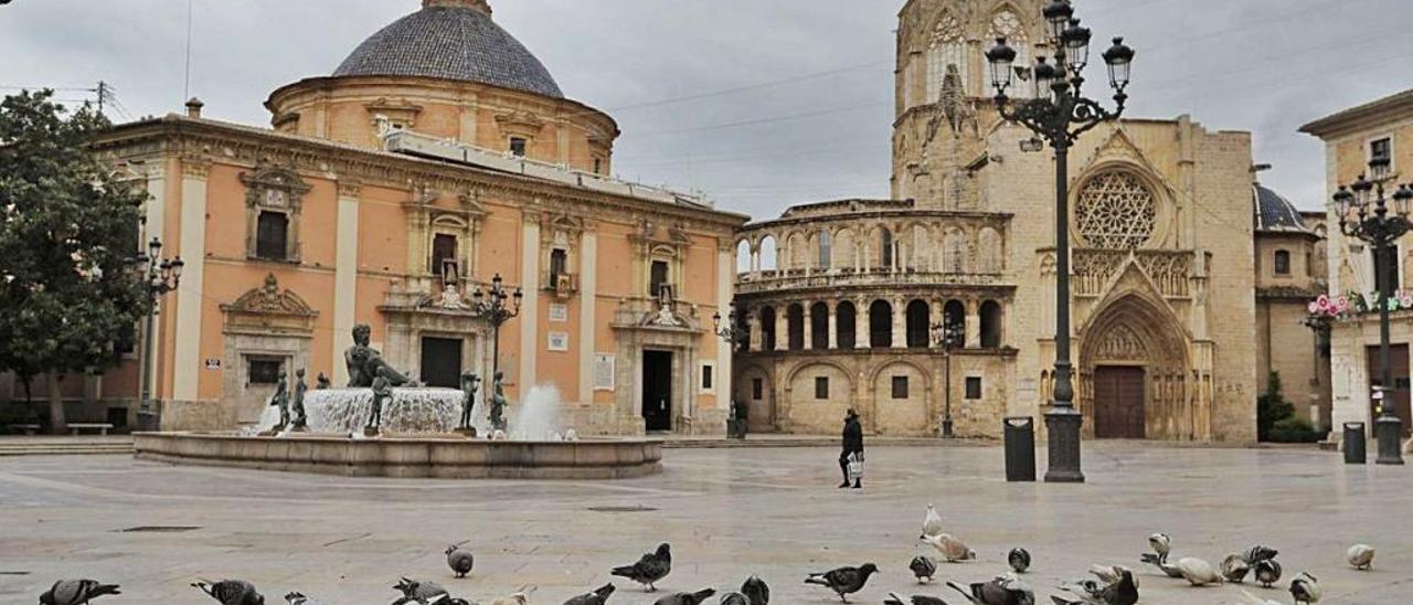 Un grupo de palomas picotea en una casi desierta plaza de la Virgen.