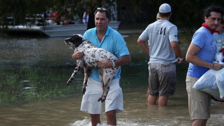 Harvey se debilita sobre Luisiana pero continúa con intensas lluvias en Texas