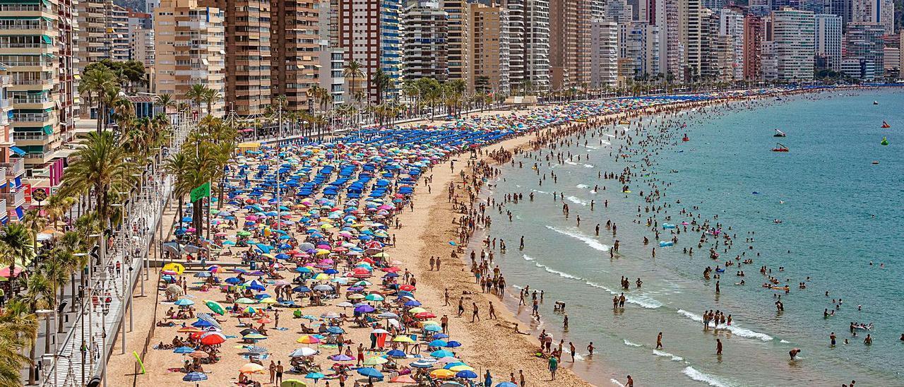 La playa de Levante de Benidorm repleta de bañistas ayer viernes.     DAVID REVENGA