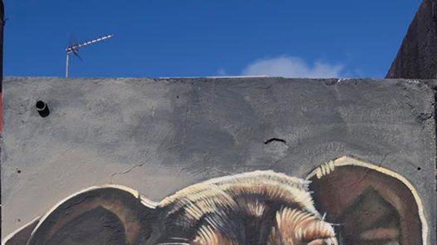 Timple, el perro maltratado en Lanzarote, ya es una obra de 'Sabotaje Al Montaje'