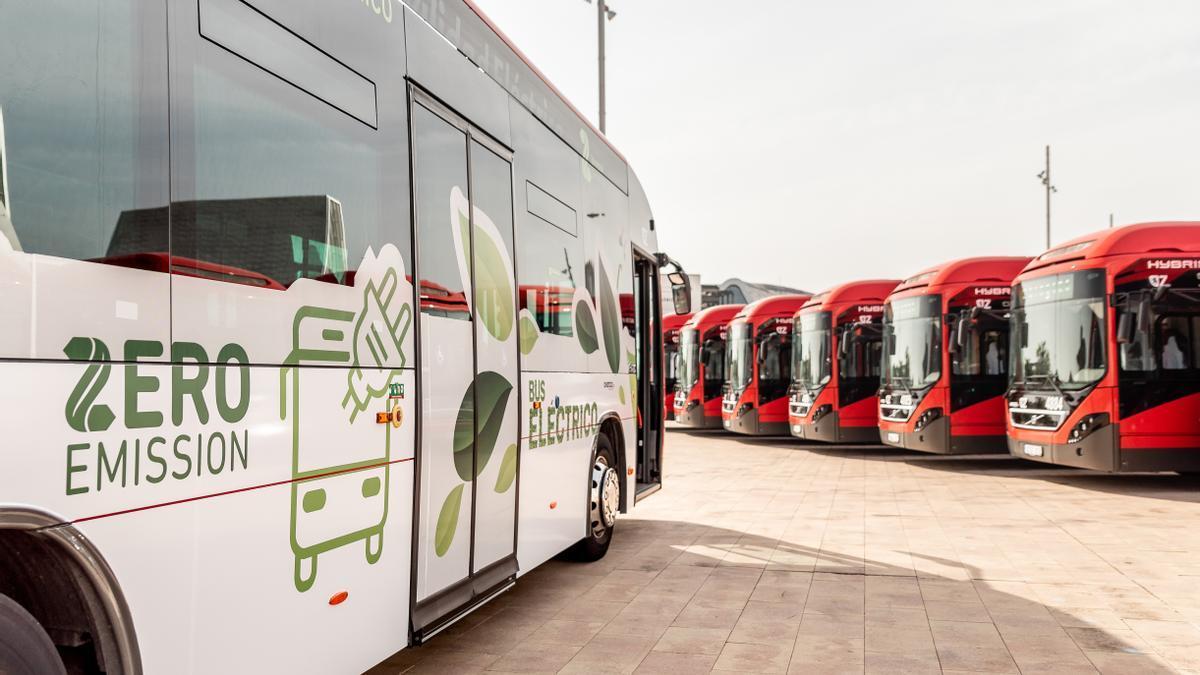 El 31,5% de la flota de Avanza en Zaragoza está compuesta por vehículos con tecnologías sostenibles.