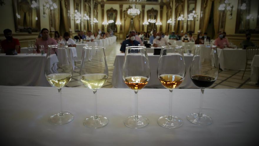 Jornada de vinos en rama Montilla-Moriles